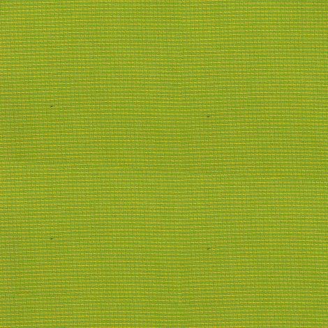041 Flash Citrus (Citron)